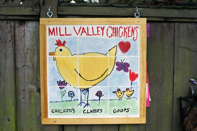 Mill Valley Chickens, Mill Valley, California, USA, March 19, 2011
