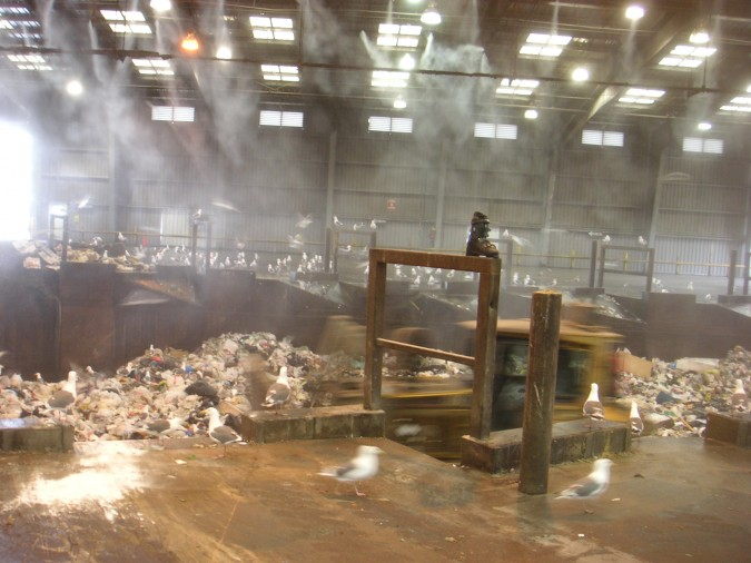 Inside San Francisco Recology dump, March 26, 2007