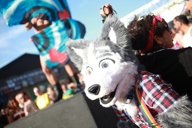 San Francisco Folsom Street Fair, September 23, 2012. Photo of person in Fox costume.
